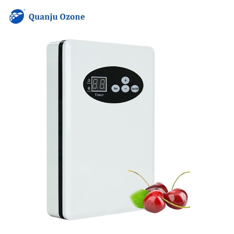 Anion Ozone Generator