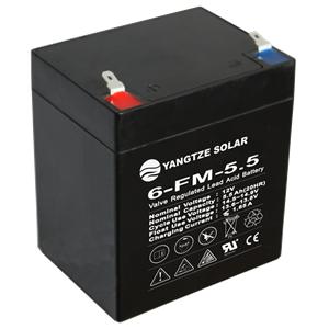 12V 5.5Ah Lead Acid Battery