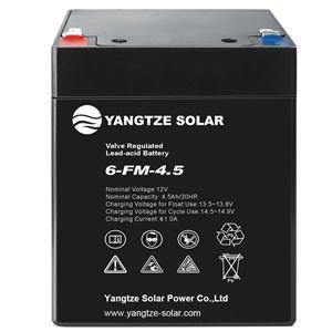 12V 4.5Ah Lead Acid Battery