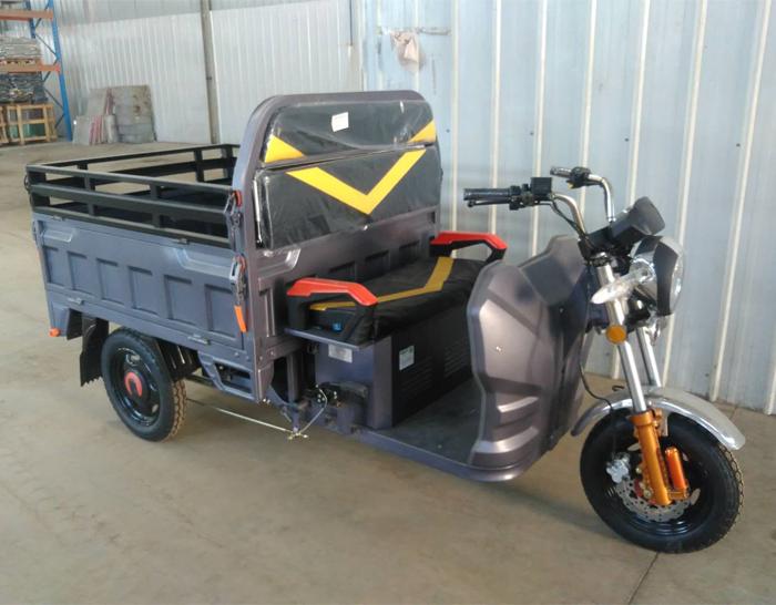 Cargo Electric 3 Wheel Motorcycle