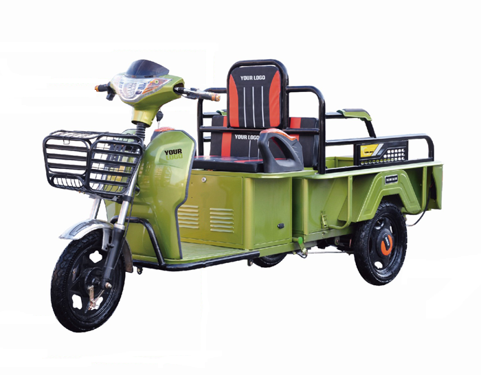 Cargo Electric Tricycle With Passenger Seats