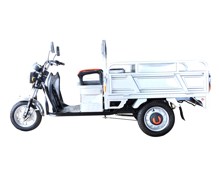2 Seats Cargo and passenger Use Electric Trike