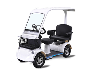 4 Wheels Luxury Electric Passenger Scooter 2 seats