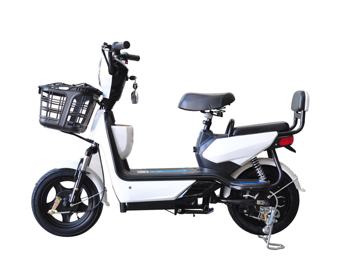 Electric Scooter adults