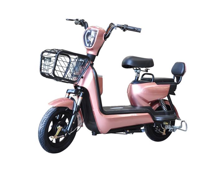 Low price electric bike
