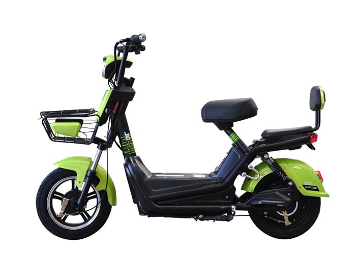 Cheap Two Wheels Battery Electric Bike