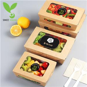 Environmental protection salad box