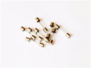 玻璃管保险丝6.3 X 30 mm