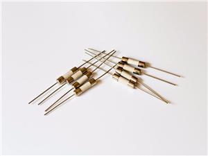 陶瓷管保险丝延时轴引线5x20 Mm
