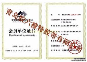 Member of Association