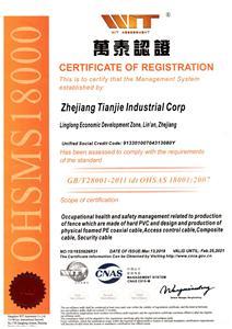 Zhejiang Tianjie Industrial Corp OHASA18001 Certificate