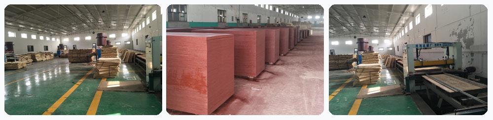 Building-template-factory1.jpg