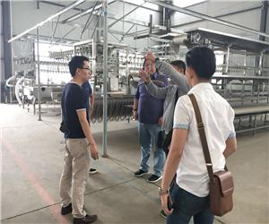 Indonesian customers come to visit OsaintGroup and order slaughter line