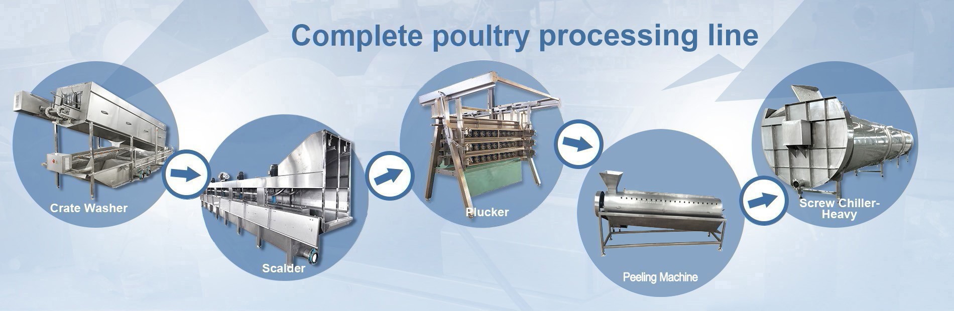 poultry-slaughtering-line