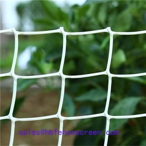 Plastic Garden Fence Mesh