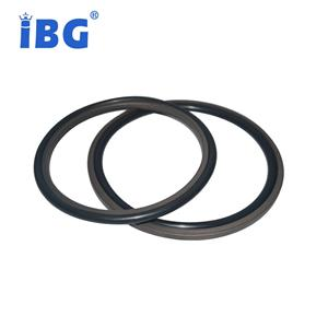 ISO/TS16949:2009 Oil-resistant Hydraulic Cylinder Shaft Viton And Ptfe Glyd/step Seals Ring