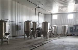 5BBL Microbrewery installed in Canada