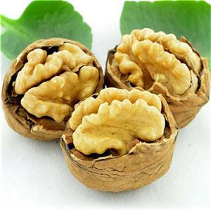 High quality Walnut In Thin Shell Quotes,China Walnut In Thin Shell Factory,Walnut In Thin Shell Purchasing