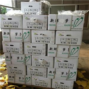 High quality Radish Quotes,China Radish Factory,Radish Purchasing
