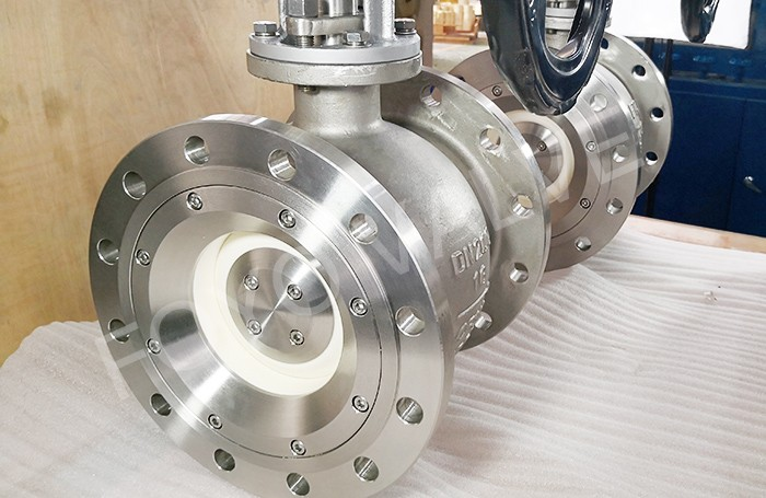 SS Body Ceramic Segment Ball Valves
