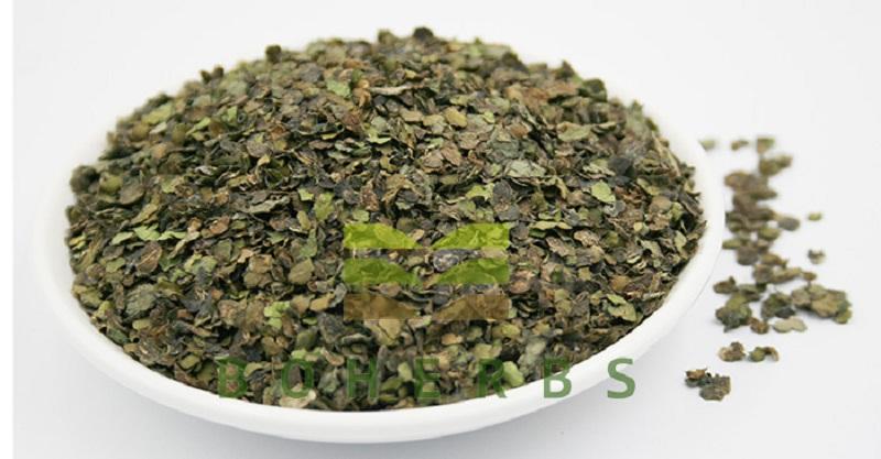 Herba Spirodelae (Spirodela polyrrhiza) 002.jpg