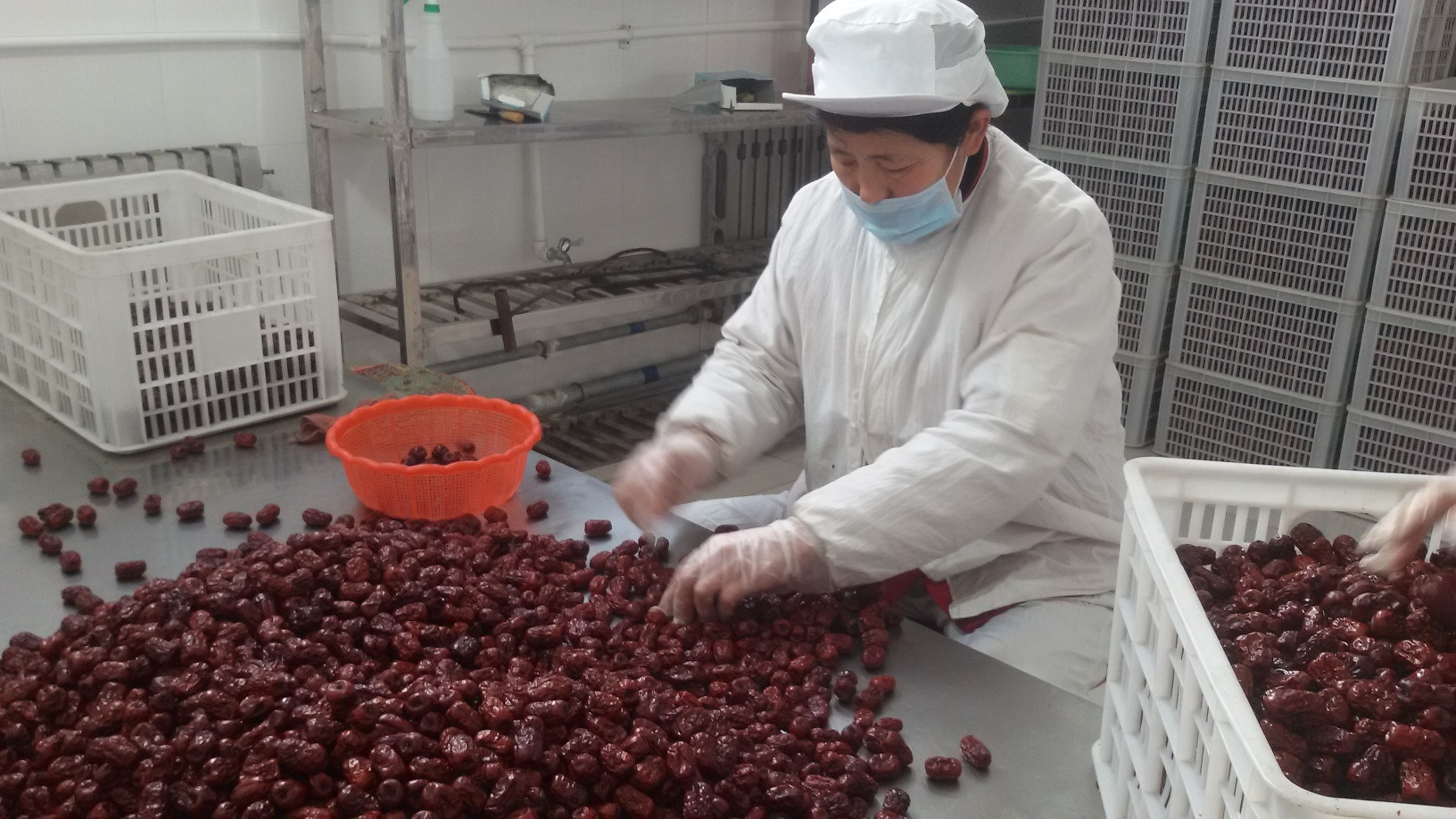 ALIORGANIC organic Chinese red dates Featured process.jpg