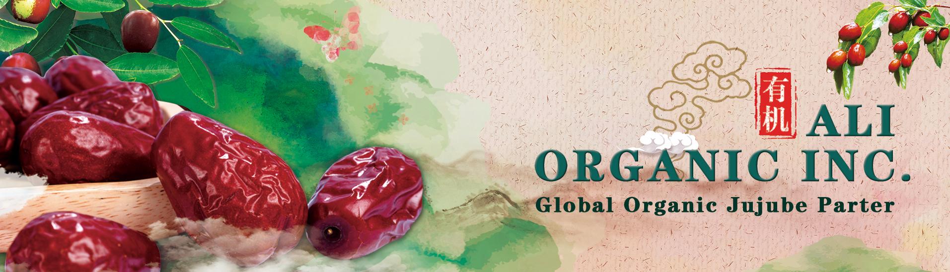 organic jujube