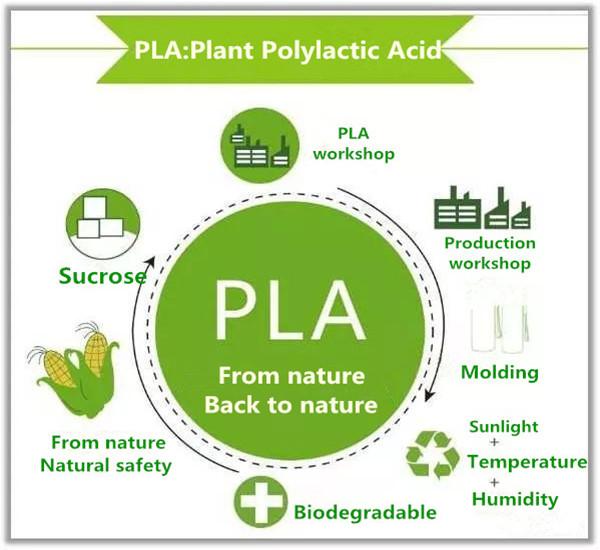 Biodegradable Compost Plastic