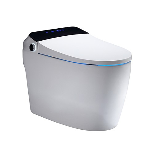 Ceramic Toilet Toilet