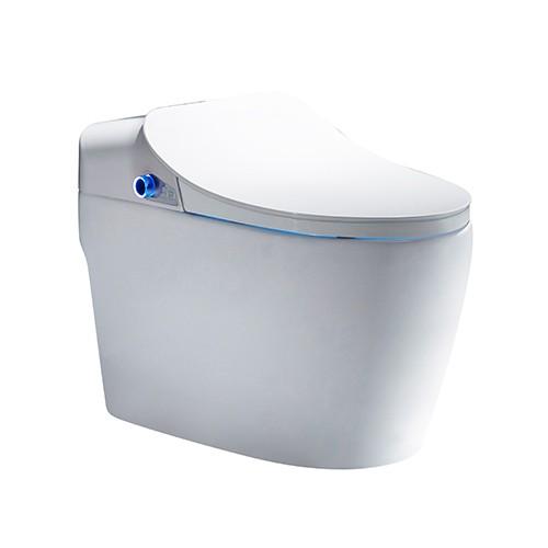 Smart Toilet Toilet