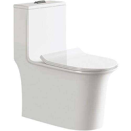 Siphon Toilet