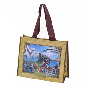 Customizable Recycle PET Botton Bag Shopper
