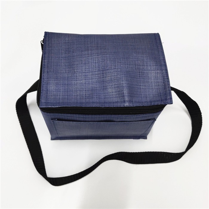 Wholesale Customizable Insulated Non Woven Cooler Bag lunch bag, Customizable Insulated Non Woven Cooler Bag lunch bag Manufacturers, Customizable Insulated Non Woven Cooler Bag lunch bag Producers