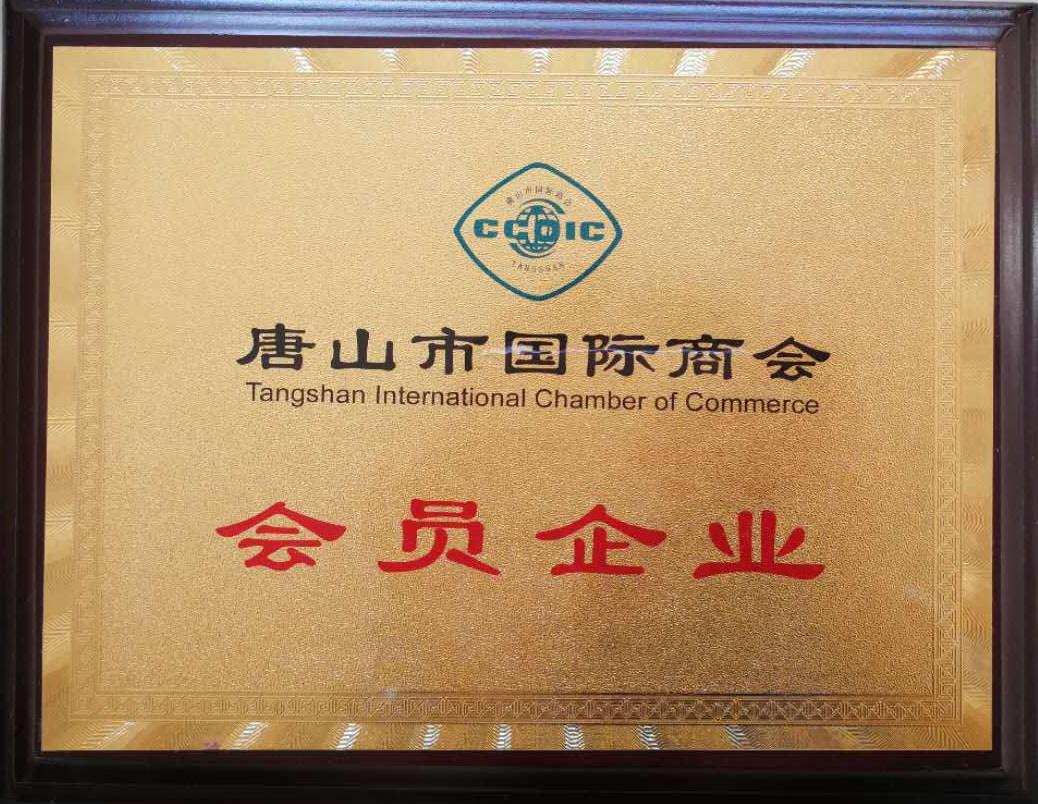 International chamber of commerce member enterprises