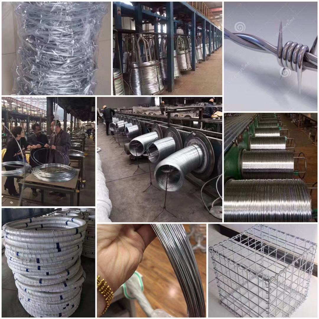 galvanized steel wire rope