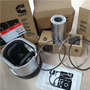 Cummins Engine М11 Piston Kits 4025161