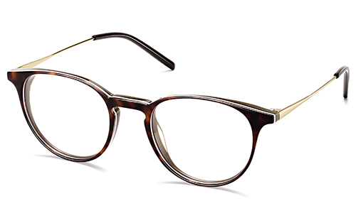Unisex Panto Ultra Slim Light Acetate Combo Eyeglass Frame Manufacturers, Unisex Panto Ultra Slim Light Acetate Combo Eyeglass Frame Factory, Supply Unisex Panto Ultra Slim Light Acetate Combo Eyeglass Frame
