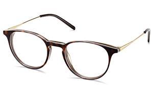 Unisex Panto Ultra Slim Acetate Combo Eyeglass Frame