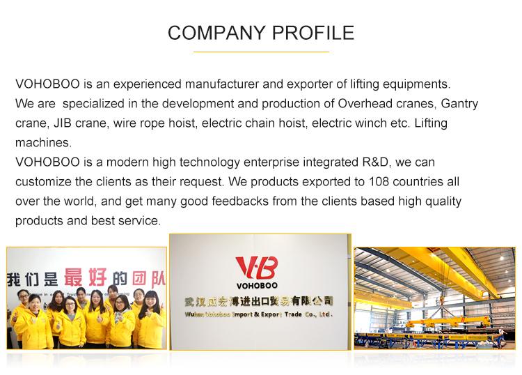 Produce Single Girder Gantry Crane