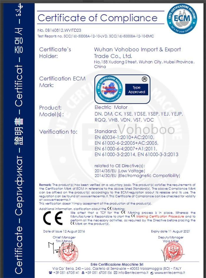 Hoist Motor CE Certificate