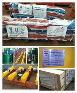Indonesian customers! Single Girder Overhead Crane 1t Span 3m