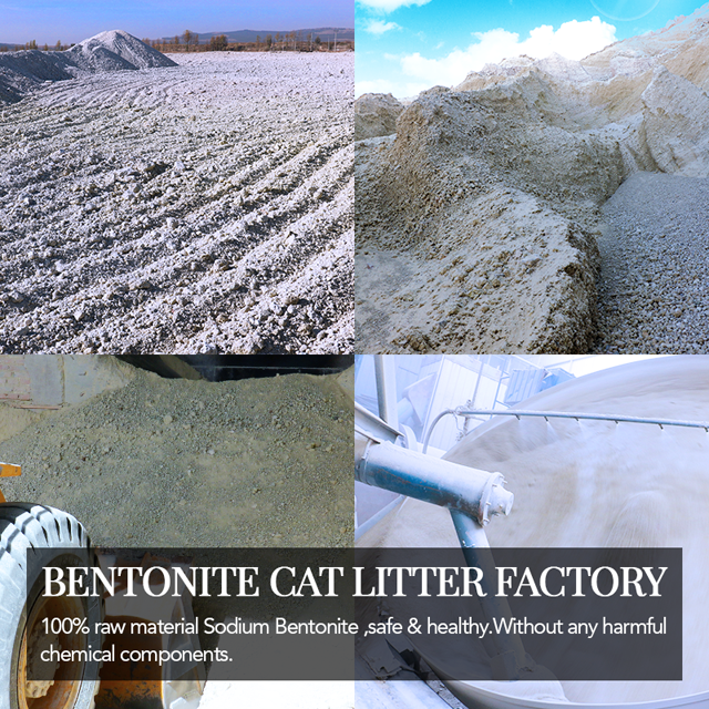 cat Litter Factory