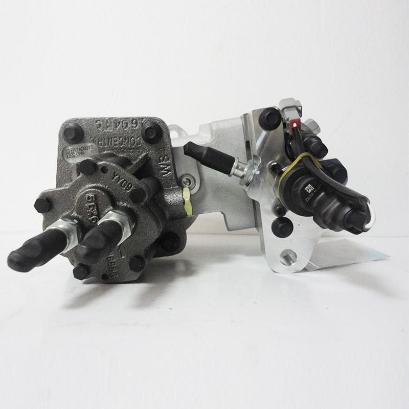 DCEC ISLE Fuel Pump 3973228 Manufacturers, DCEC ISLE Fuel Pump 3973228 Factory, Supply DCEC ISLE Fuel Pump 3973228