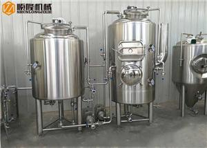 Simple Brewery System 300L Small Beer Brewing Equipment With Steam Condenser