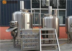 Équipement micro de brasserie d'hôtel chaud d'équipement de brasserie de bière de la vente 500L à vendre