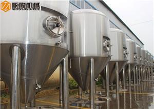 Cuves de fermentation coniques à bière en acier inoxydable