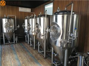 500L beer fermentation tank for brewing expansion