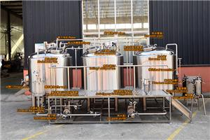 1000L craft beer brewery equipment for sales