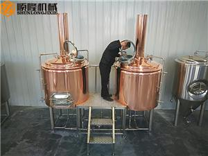 500L commercial beer brewing equipment for restaurant