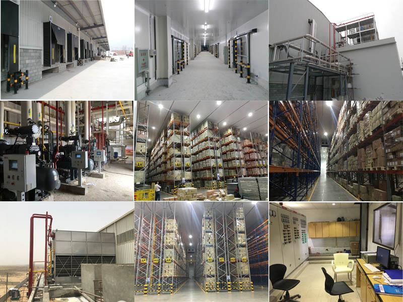 Logistyka Cold Storage